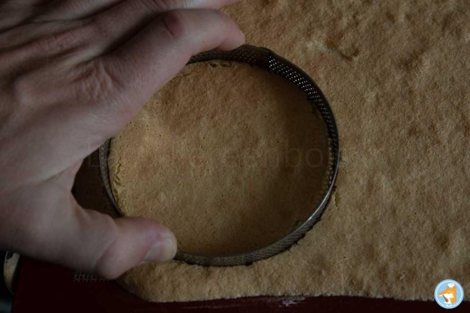 Découpez un cercle dans le biscuit moelleux et elastique