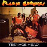 Flamin Groovies - Teenage Head
