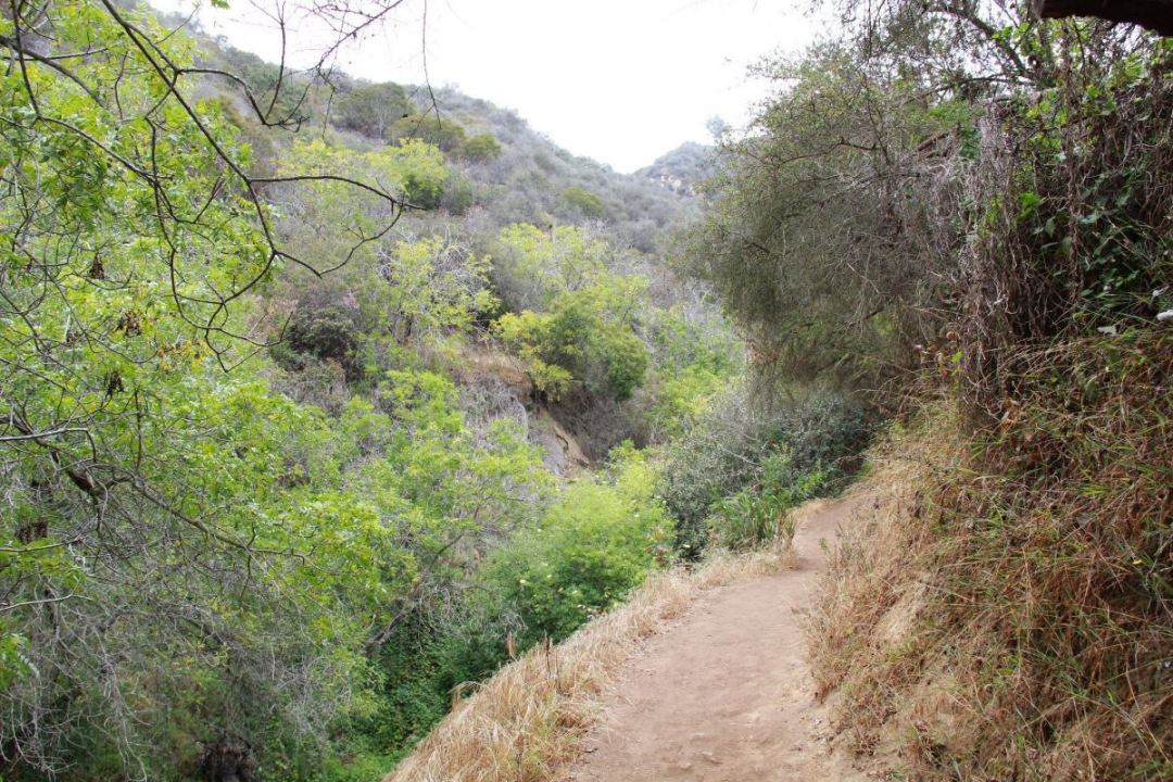 Los Liones trail near beginning