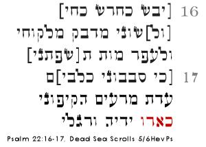 psalm22dss