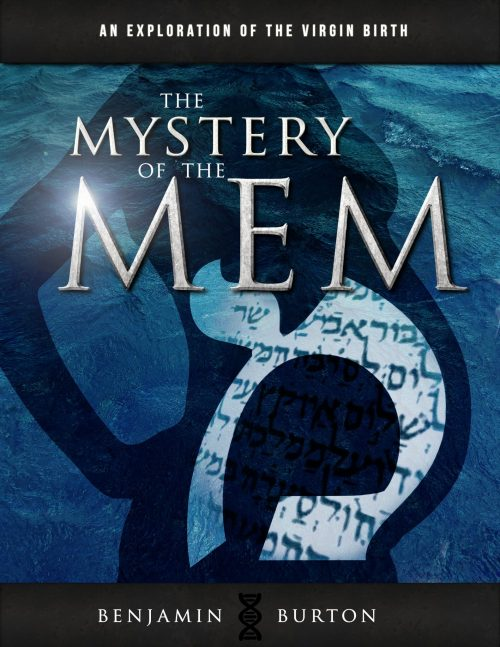 The Mystery of the Mem