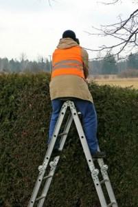 ladder for trimming high ladder