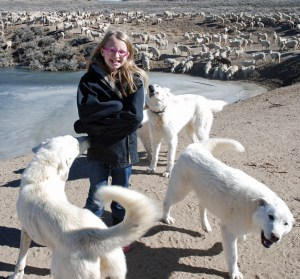 Siobhan and the guard dogs