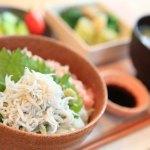 「駿河湾の釜揚げしらすとねぎとろ丼」でお腹が喜ぶ朝食