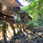 咖啡廳路古董古董掛川、在探索經驗的癒合流和樹