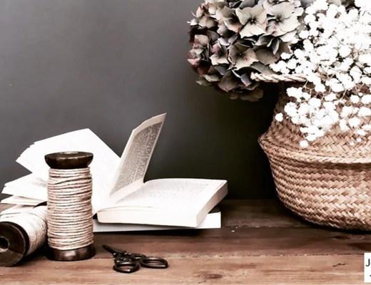 livre et plantes