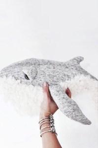 baleine details