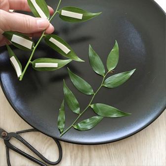 détails des scotchs pour fixer les feuilles-diy vegetal