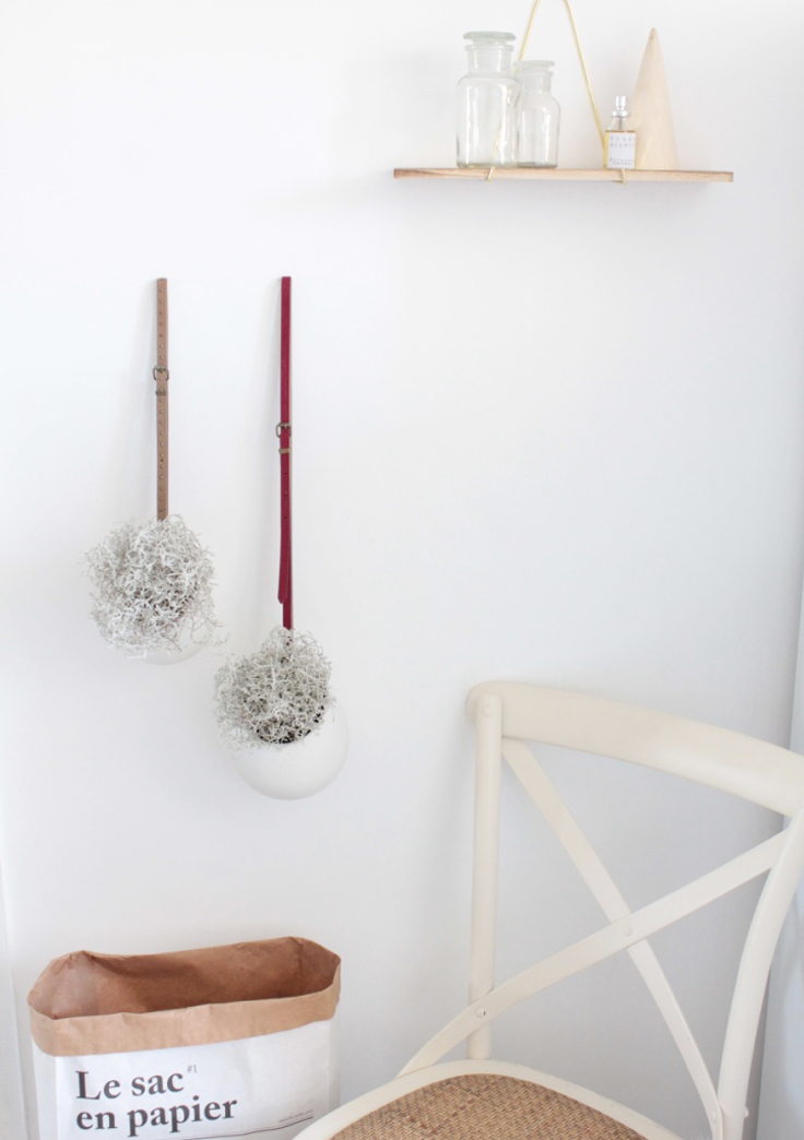 plantes murales suspendues DIY