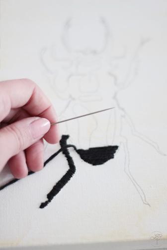 début couture insecte DIY cabinet de curiosité