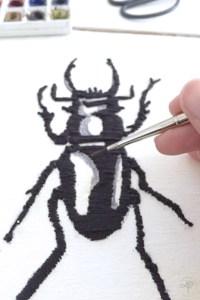 insecte et aquarelle DIY cabinet de curiosité