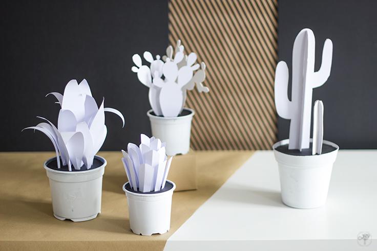 DIY cactus papier la delicate parenthese