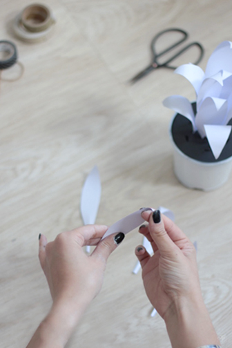 DIY cactus en papier la delicate parenthese