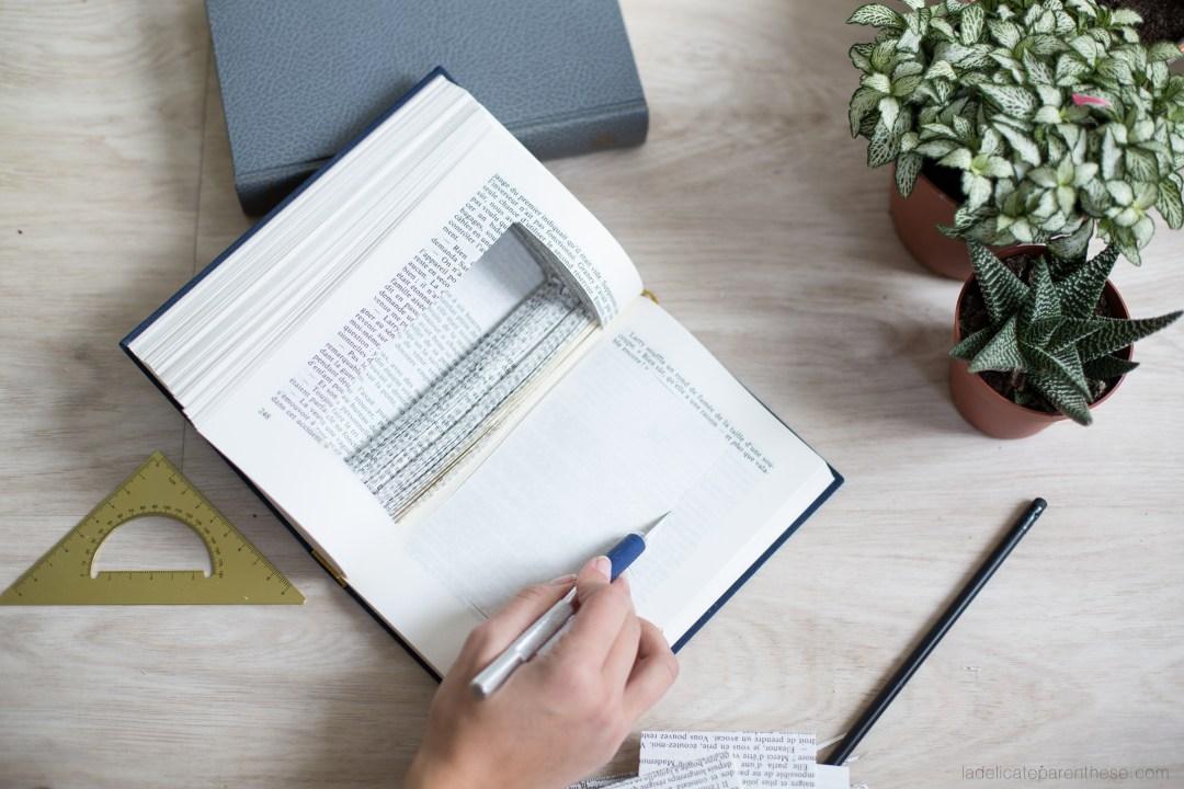 DIY création livre végétal avec succulente