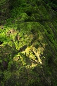 Sierra Nevada: An ancient map on a boulder in La Cuidad Perdida