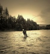 Fish on River Lochy