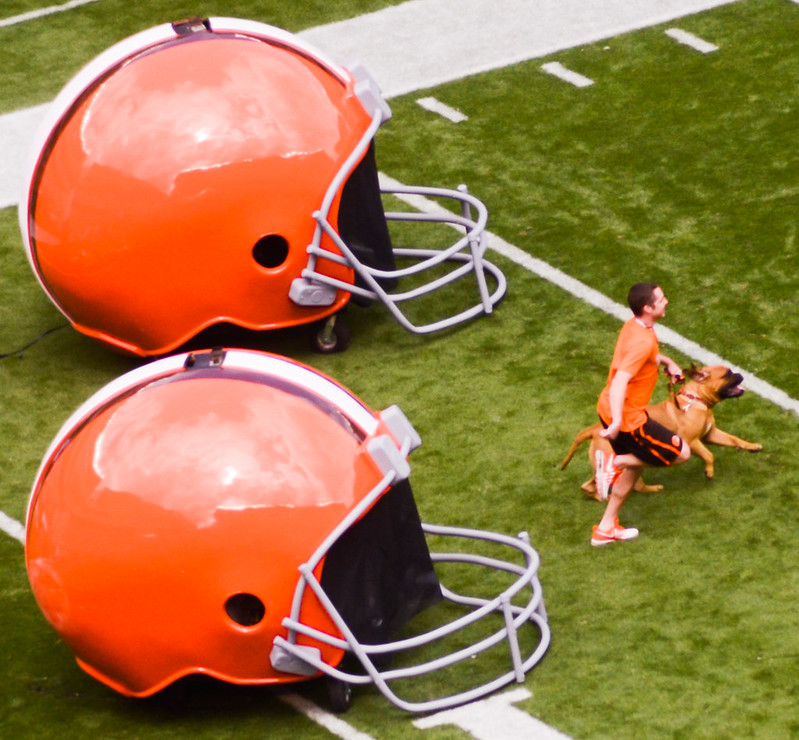 The Cleveland Browns dog mascot running out of the stadium tunnel with a dog handler between two giant Cleveland Browns helmets
