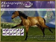 e-rh-PhotographyPoseHUD-Active