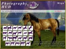 e-rh-PhotographyPoseHUD-Mega