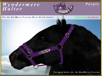 E-RH-Friesian-wyndermereHalter-Purple