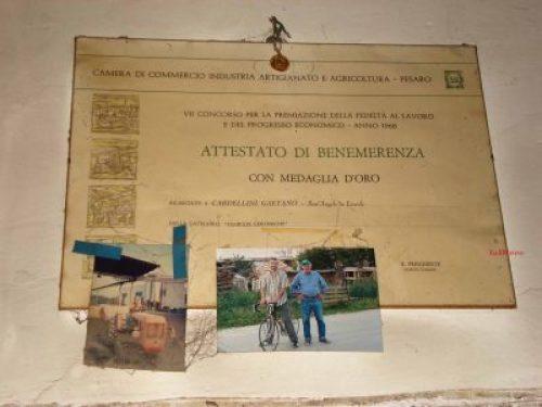 Montecchio di Vallefoglia - attestato famiglia Cardellini