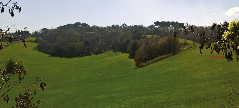 San Nicola in Valmanente - Pesaro (foto F. Pinto)