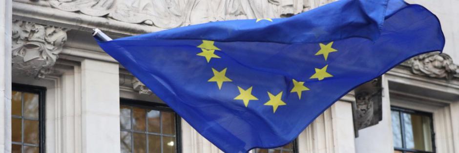 Elezioni Europee, l'elenco dei presidenti di seggio per le 49 sezioni di Bisceglie