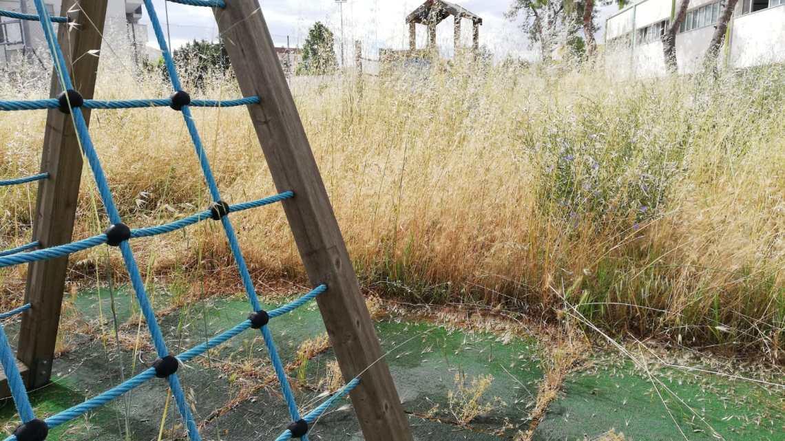 """Un intero anno scolastico invasi dalle erbacce alla scuola """"Angela Di Bari"""""""