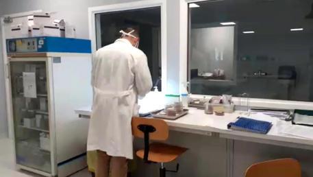 In Puglia 18 nuovi casi, i contagi salgono a 108