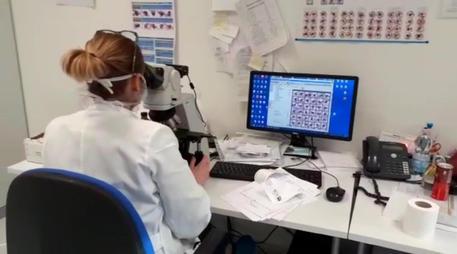 Coronavirus: oggi in Puglia 4 nuovi positivi