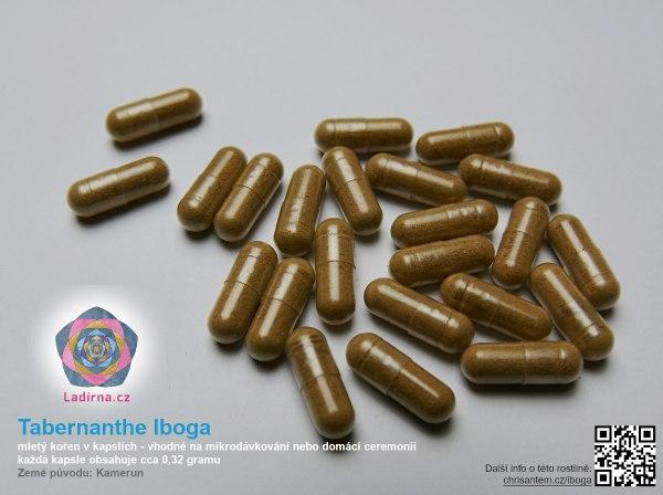 Tabernanthe Iboga, drcený prášek z kořene v kapslích