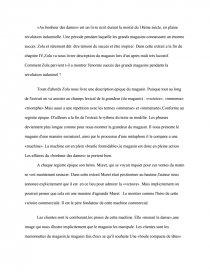 Au Bonheur Des Dames Extrait Description Du Magasin : bonheur, dames, extrait, description, magasin, Bonheur, Dames
