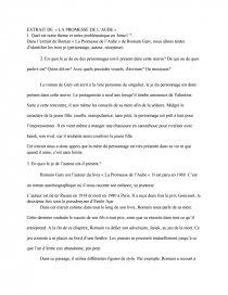 La Promesse De L'aube Résumé Par Chapitre : promesse, l'aube, résumé, chapitre, Etude, Chapitre, Roman, Promesse, L'aube, Romain, Mémoire