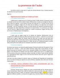 La Promesse De L'aube Romain Gary Résumé : promesse, l'aube, romain, résumé, Promesser, L'aube, Fiche, Lecture, Lelemhx