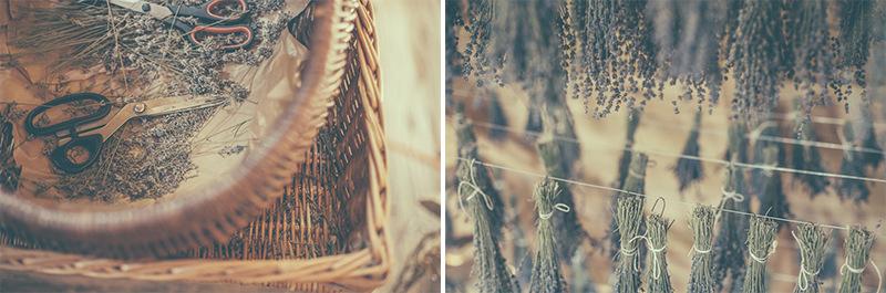 lavenda_ladnebebe_WKrysiakPhotography_LATO2015_21