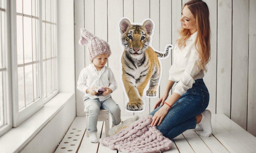 maly-tygrys2