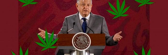 Resultado de imagen de AMLO descarta uso lúdico de la mariguana y lanza nueva campaña antidrogas