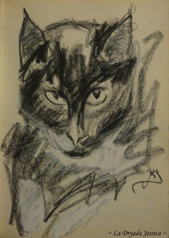 "~ The most popular Cat of the Street ~ Fusain et pastel / Charcoal and pastel Issu du / From "" The Book of Feline Dreams """