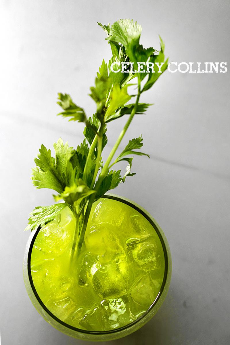 celery-collin7