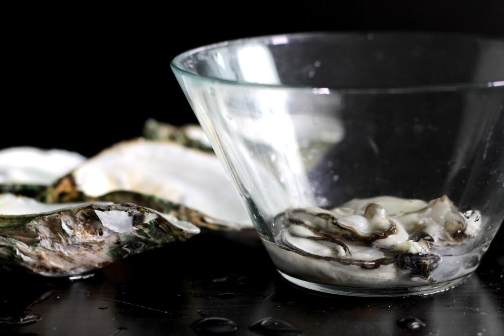 shuck-oyster13