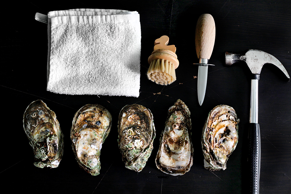 shuck-oyster2