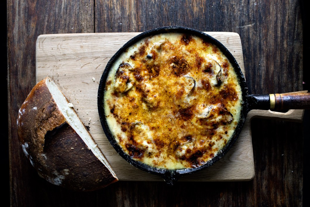 three-cheese-oyster-gratin14