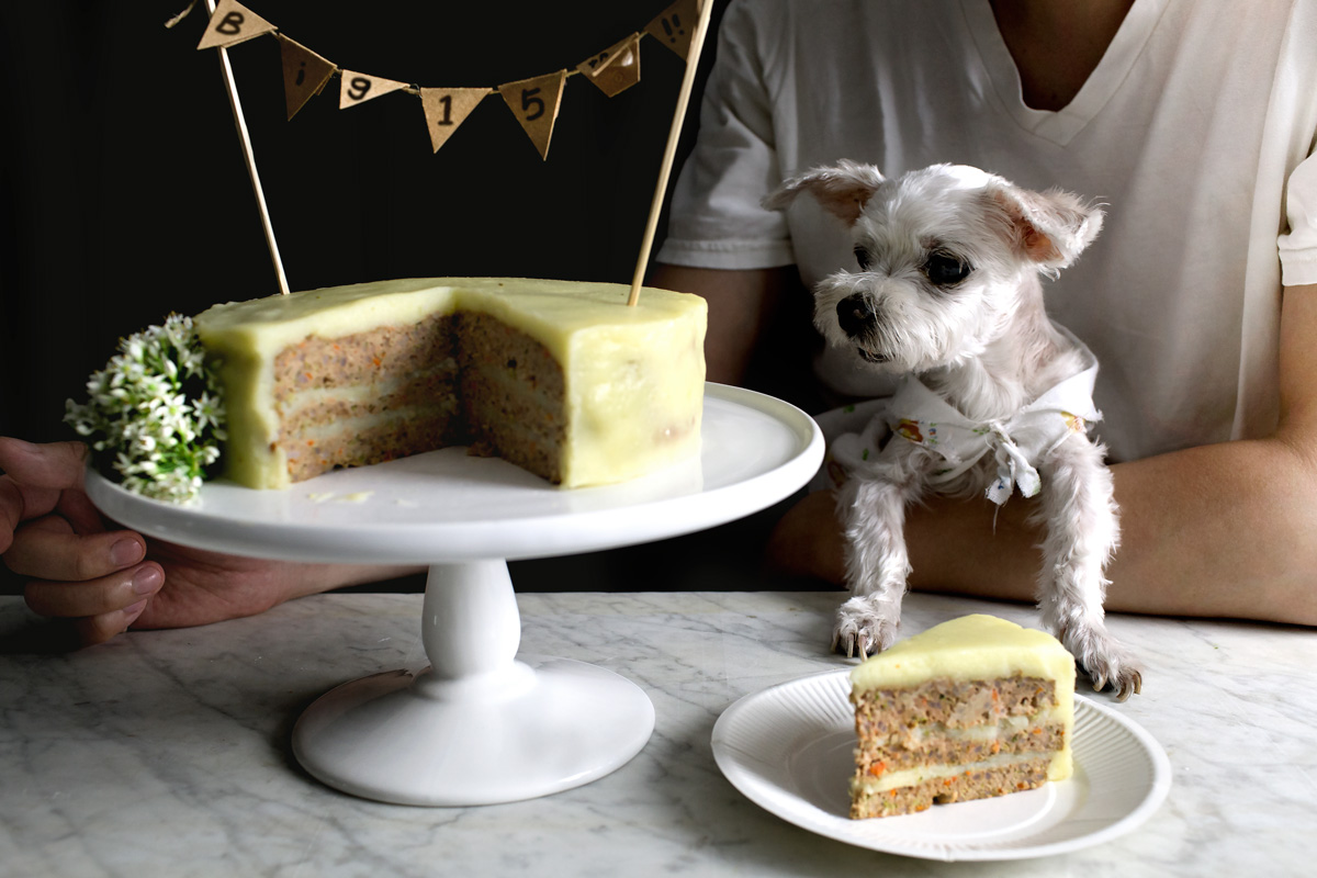 Tremendous 3 Dog Cake Recipes With Meat The Dog Bakery Personalised Birthday Cards Cominlily Jamesorg
