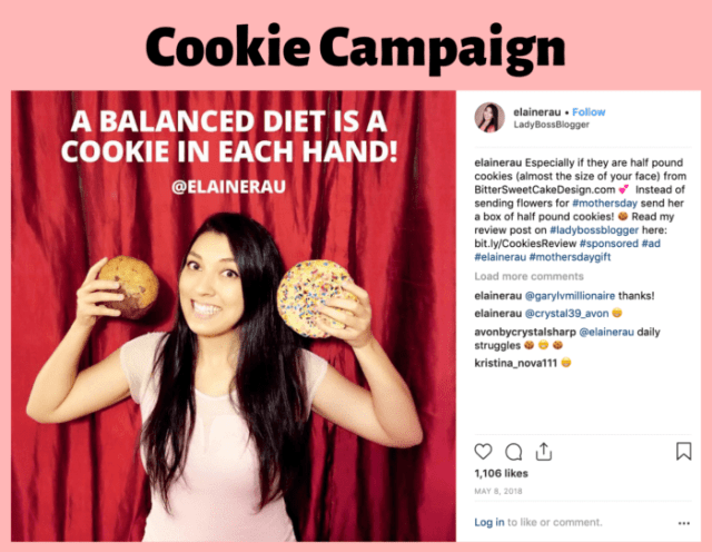 Influencer Campaigns Elaine Rau cookies
