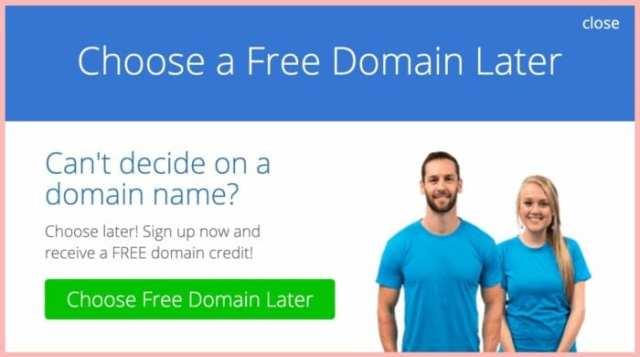 choose domain later blog host ladybossblogger