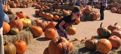 Pumpkin Patch List 2019