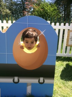 Enzo in the egg