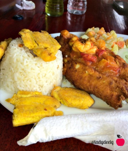 arroz con pescado Ecuador ladydeelg