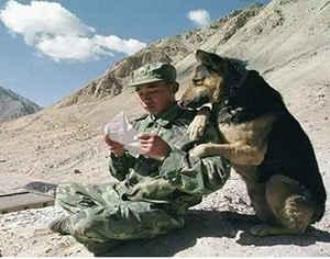 Первое письмо в армию для любимого солдата