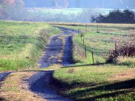 Country_Lane769